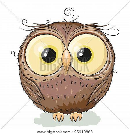 kostenloser chat ao sex owl