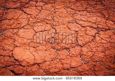 Red Cracked Ground