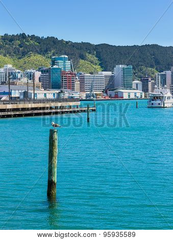 Wellington,new Zealand