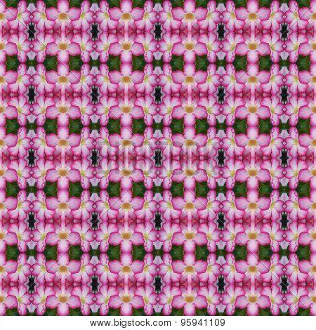Apocynaceae Flower Seamless