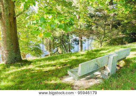 Empty Park Beanch Seat Overlooking Lake Through Trees.