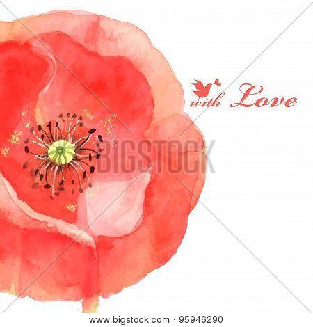 Flower Poppy Love Bird