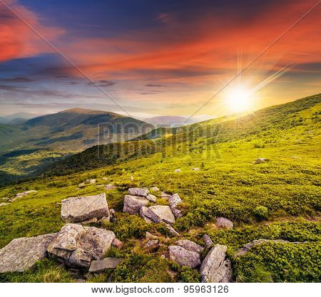 Hillside With White Stones At Sunset