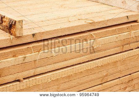 Pine limber limber