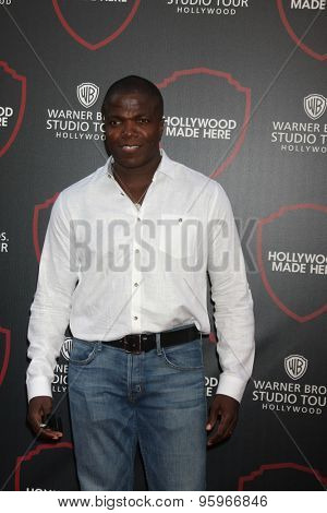 LOS ANGELES - JUL 14:  Reno Wilson at the Warner Bros. Studio Tour Hollywood Expansion Official Unveiling, Stage 48: Script To Screen at the Warner Brothers Studio on July 14, 2015 in Burbank, CA