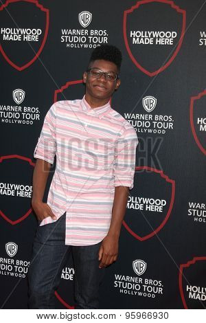 LOS ANGELES - JUL 14:  Kamil McFadden at the Warner Bros. Studio Tour Hollywood Expansion Official Unveiling, Stage 48: Script To Screen at the Warner Brothers Studio on July 14, 2015 in Burbank, CA
