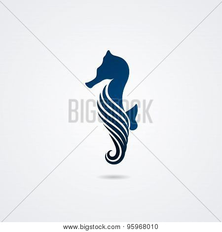 Seahorse isolated on white background