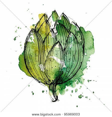 Watercolor Illustration Of Artichoke