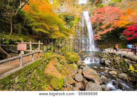 Autumn Tree With Mino Falls In Japan