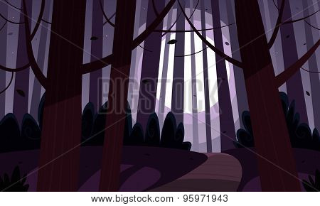 Night Forest Trail
