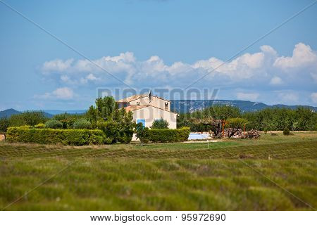 Rural House In A Harvested Lavender Field