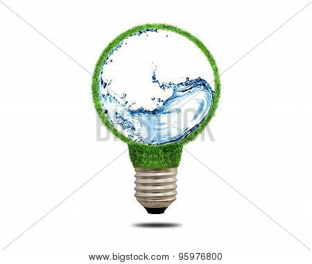 Green Grass Light Bulb With Water Inside.