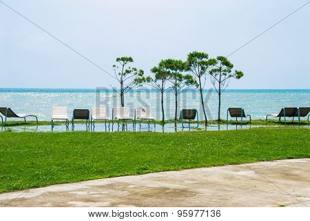 Seaside Resort, Chaise Longue, Black Sea, Grass, Trees