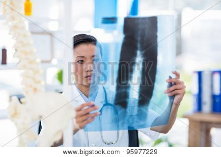 Concentrated doctor analyzing X-rays in medical office