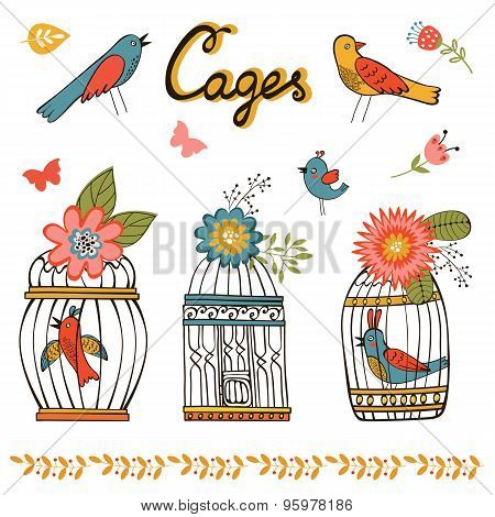 Beautiful collection of bird cages and little birds