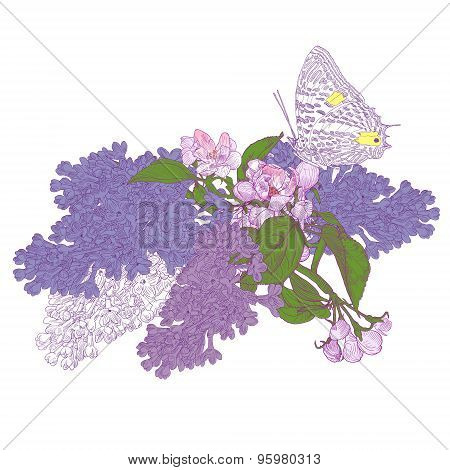 Big Butterfly Sitting Down On Blooming Lilac And Apple Tree Twig
