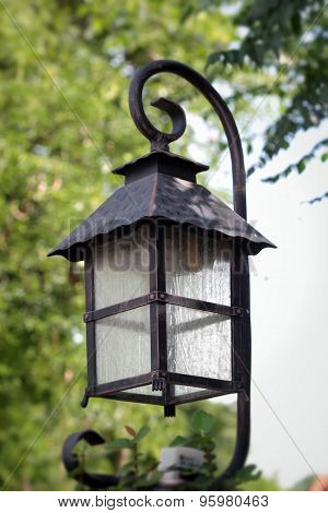 Lantern In The Park And Trees.