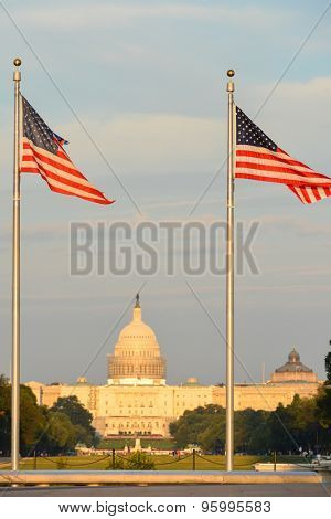 US Capitol Building as seen among the waving national flags