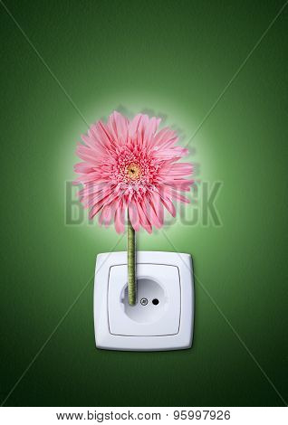 Flower In Making Electricity