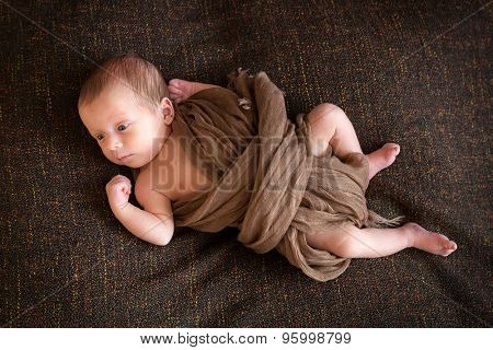 Newborn baby boy portrait on the brown blanket
