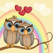 foto of enamored  - Enamored owls on a background of rainbow - JPG
