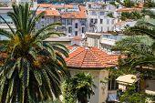 pic of nice house  - Summer Landscape Of Nice - JPG