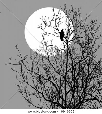vector  illustration ravens sitting on tree against sun