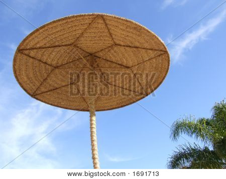 Wicker Sunshade & Palm Tree
