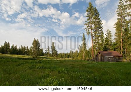 Rustic Home In A Meadow