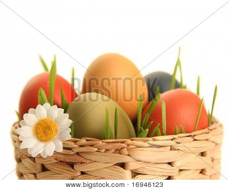 bright easter eggs on white