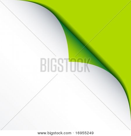 vector white bended paper with green background