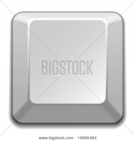 vector blank white key