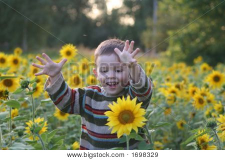 The Child In Sunflowers