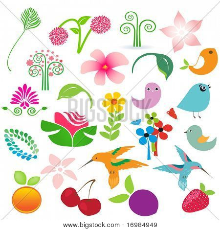 Big  set of nature elements isolated over white. Birds, fruits and flowers for your design