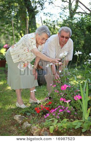 elderly couple in garden