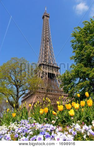 Spring In Paris, Eiffel Tower