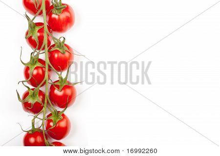 Cherry Tomatoes Line