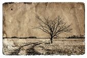 foto of dirt road  - grunge background - JPG