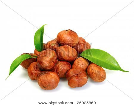 hazel nuts on the white background
