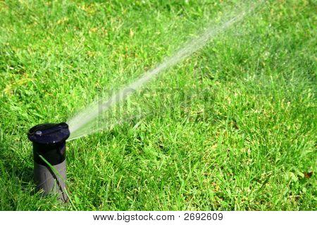 Arbeitsgruppe Rasen-Sprinkler