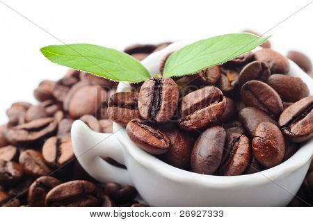 white cup with  coffee beans and leaves