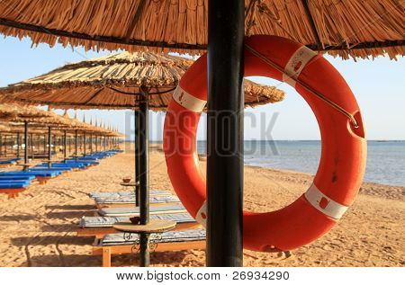 Lifebelt on the beach