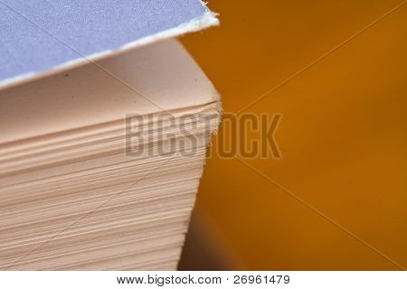 Detail of a book's pages