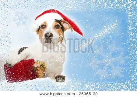 postcard with funny dog as santa, gift, snow, snowflakes