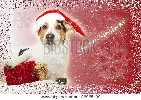 christmas postcard with funny dog as santa, gift, snow and snowflakes