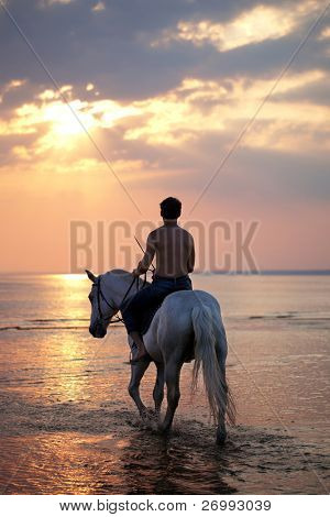 The image of a male riding a horse on the background of the sea