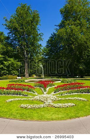 Beautiful park with blooming flowers in the front