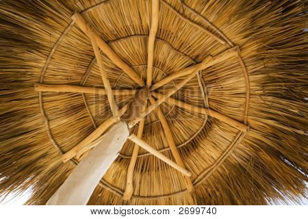 View From Under A Palapa