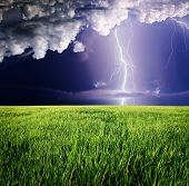 Thunderstorm with lightning in green meadow.