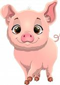 Illustration Of Cute Pig. Pretty Pig Cartoon Isolated On White Background.  Pig Cartoon Character poster